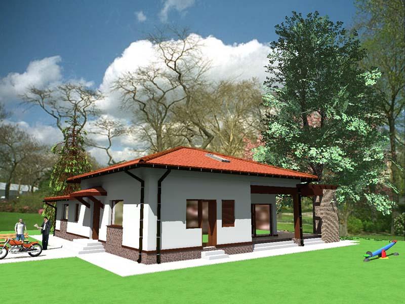 Proiect casa Tatiana
